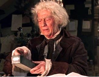 """""""Não é o bruxo que escolhe a varinha Sr. Potter, mas a varinha quem escolhe o bruxo."""""""
